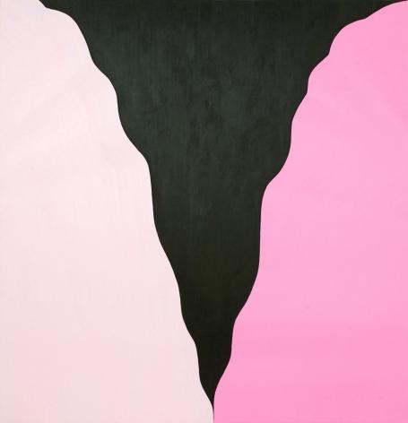 Osamu Kobayashi, Silhouette Canyon, 2017