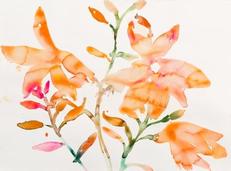 KimMcCarty, Orange Flowers, 2017