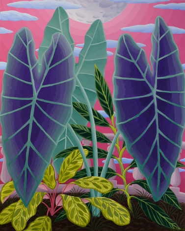 Amy Lincoln, Purple Taro, 2016