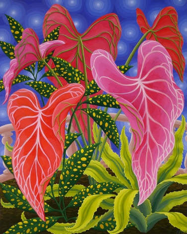 Amy Lincoln, Pink Caladium, 2016