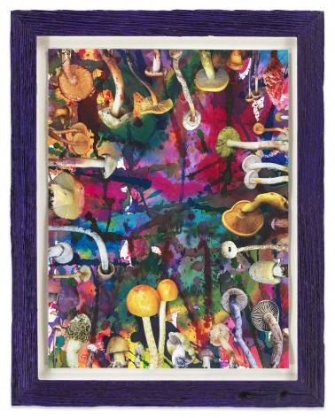 Untitled (SHRooMS purple frame), 2020, Watercolor and collage on paper with artist frame (reclaimed wood), 14 1/2 x 11 1/2 inches, 36.8 x 29.2 cm, MMG#32888