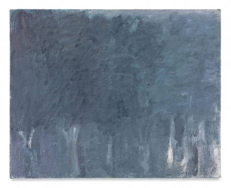 Tre Alberi, 1963, Oil on canvas, 31 3/8 x 39 1/4 inches, 79.7 x 99.7 cm, MMG#9713