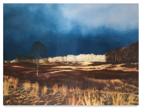 Field, 2019, Oil on linen, 75 x 100 inches, 190.5 x 254 cm,MMG#31250