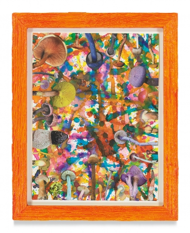 Untitled (SHRooMS), 2021, Watercolor and collage on paper with artist frame (reclaimed wood), 14 5/8 x 11 3/4 inches, 37.1 x 29.8 cm, MMG#33188