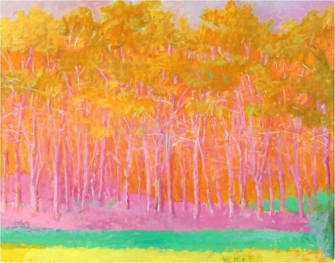 Strong Color, 1993, Oil on canvas, 52 x 66 inches, 132.1 x 167.6 cm, A/Y#21528