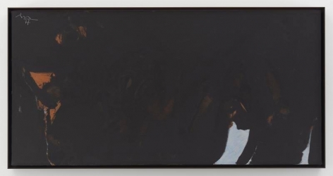 Les Caves IV, 1977, Acrylic on canvas, 24 x 48 inches, 61 x 121.9 cm, MMG#19400