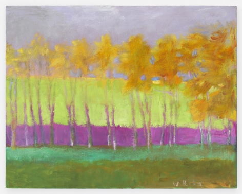 Magenta Middle Ground, 1991, Oil on canvas, 22 x 28 inches, 55.9 x 71.1 cm,MMG#29908