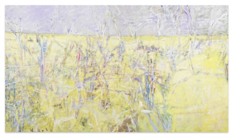 Long Landscape, 2003, Oil on canvas, 43 x 75 inches, 109.2 x 190.5 cm,MMG#10950