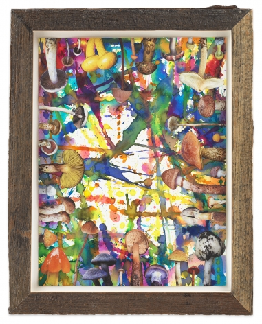 Untitled (SHRooMS natural frame), 2020, Watercolor and collage on paper with artist frame (reclaimed wood), 14 3/4 x 11 5/8 inches, 37.5 x 29.5 cm, MMG#32879