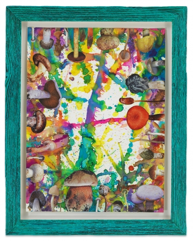 Untitled (SHRooMS turquoise frame), 2020, Watercolor and collage on paper with artist frame (reclaimed wood), 14 1/2 x 11 1/2 inches, 36.8 x 29.2 cm, MMG#32886