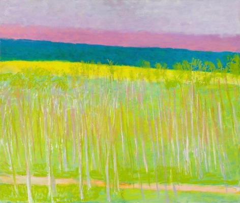 Green, Pink + Yellow, 2010, Oil on canvas, 44 x  52 inches, 111.8 x 132.1 cm, A/Y#18936