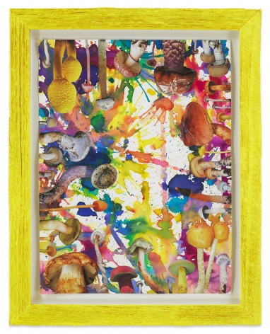 Untitled (SHRooMS yellow frame), 2020, Watercolor and collage on paper with artist frame (reclaimed wood), 14 1/2 x 11 1/2 inches, 36.8 x 29.2 cm, MMG#32887