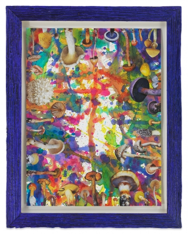 Untitled (SHRooMS purple-blue frame), 2020, Watercolor and collage on paper with artist frame (reclaimed wood), 14 1/2 x 11 1/2 inches, 36.8 x 29.2 cm, MMG#32889