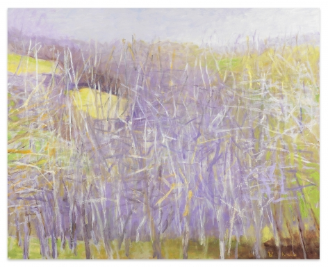Across the Valley (Midsize Version), 2005, Oil on canvas, 42 x 52 inches, 106.7 x 132.1 cm, MMG#32505