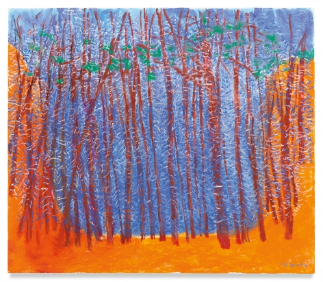 Blue Stage, Orange Wings, 2019,Oil on canvas,52 x 60 inches,132.1 x 152.4 cm,MMG#31161