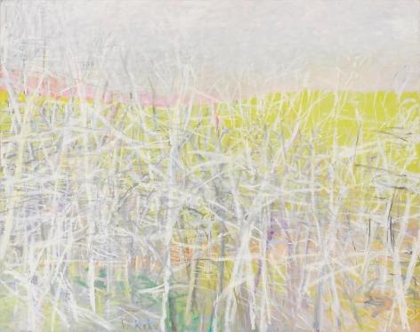 Pale Dawn, 2008, Oil on canvas, 52 x 66 inches, 132.1 x 167.6 cm, A/Y#17658