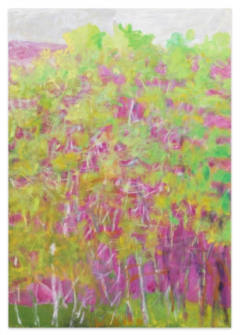 Green Bushes on Pink, 2006, Oil on canvas, 40 x 28 inches, 101.6 x 71.1 cm, MMG#31735