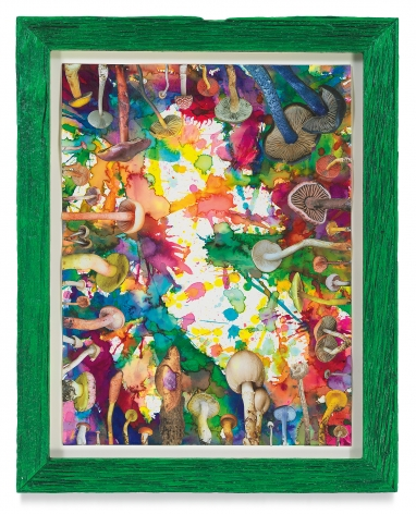 Untitled (SHRooMS), 2021, Watercolor and collage on paper with artist frame (reclaimed wood), 14 5/8 x 11 3/4 inches, 37.1 x 29.8 cm, MMG#33193