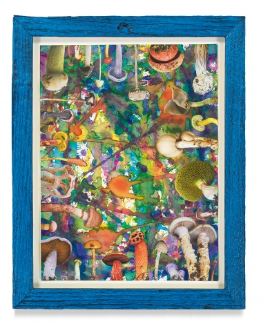 Untitled (SHRooMS), 2021, Watercolor and collage on paper with artist frame (reclaimed wood), 14 5/8 x 11 3/4 inches, 37.1 x 29.8 cm, MMG#33180