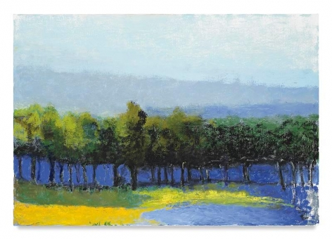 Trees Along the River, 2016, Oil on canvas, 36 x 52 inches, 91.4 x 132.1 cm, AMY#28173