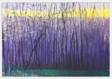 Yellow Top of the Ridge, 2004, Oil on canvas, 36 x 52 inches, 91.4 x 132.1 cm,MMG#30115