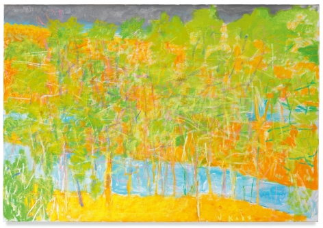 Broken River II, 2012, Oil on canvas, 36 x 52 inches, 91.4 x 132.1 cm, MMG#30118