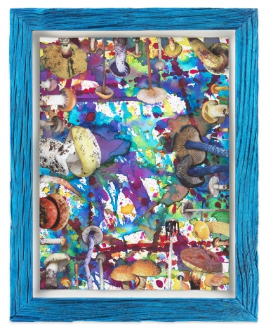 Untitled (SHRooMS blue frame), 2020, Watercolor and collage on paper with artist frame (reclaimed wood), 14 3/4 x 11 5/8 inches, 37.5 x 29.5 cm, MMG#32878
