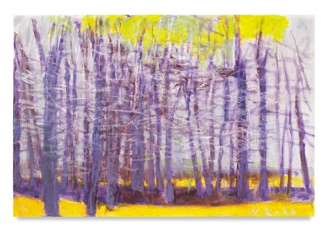 Purple Trees, 2015, Oil on canvas, 20 x 30 inches, 50.8 x 76.2 cm, AMY#28184
