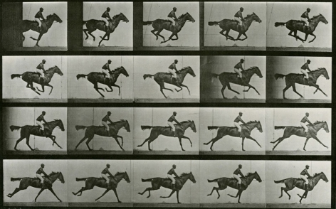 Eadweard Muybridge, Human and Animal Locomotion, Plate 627: Jockey On A Galloping Horse