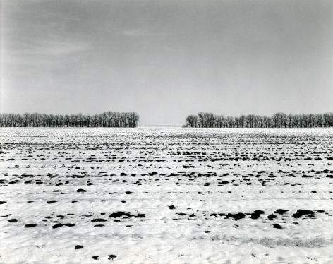 Untitled, from Illinois Landscapes, 1981, gelatin silver contact print, 8 x 10 inches