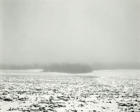 Untitled, from Illinois Landscapes, 1982, gelatin silver contact print, 8 x 10 inches