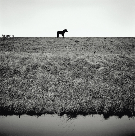Sea Bank, from the series Drained, 2016