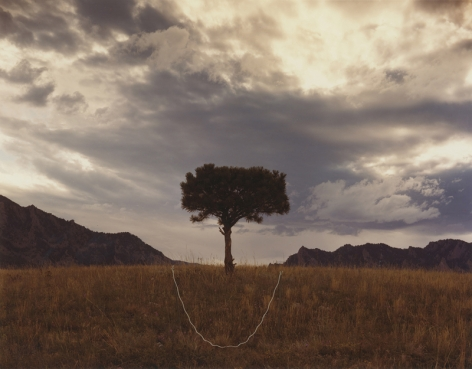Tree and Mountain Cleft, Boulder, Colorado, 1977