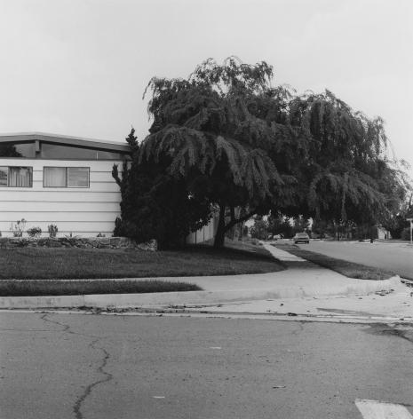 San Diego #7, 1978