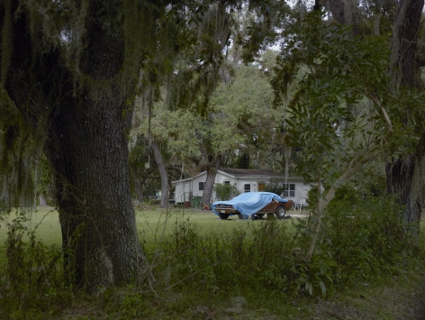 Blue Tarp, Florida, 2014