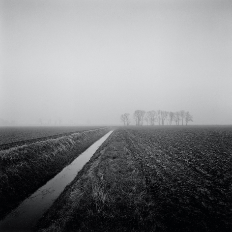 Windy Corner, from the series, Farmed, 2013