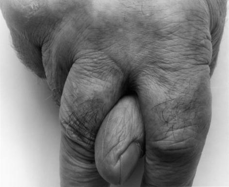 Thumb and Fingers, II, 1999