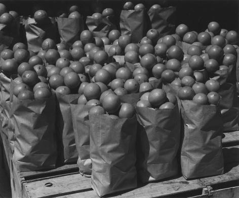 Untitled, (California Citrus)1936