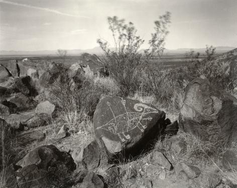 Big Horn Sheep with Arrows, Three Rivers, New Mexico, 1982