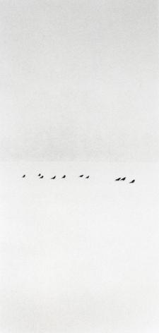 Ten Birds in Snowstorm, Wakoto, Hokkaido, Japan, 2002