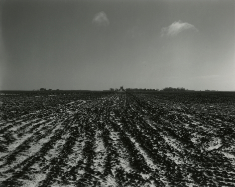 Untitled, from Farm Landscapes, 1987, gelatin silver contact print, 8 x 10 inches