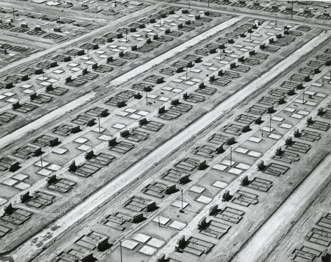 Mass Production Housing, Lakewood, CA, 1950