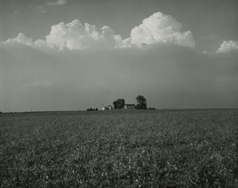 Untitled, from Farm Landscapes, 1985, gelatin silver contact print, 8 x 10 inches
