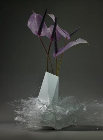 Martin Klimas, Anthurium, 2015