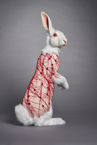 Deborah Simon, Flayed Rabbit: Albino with Nerves, 2017