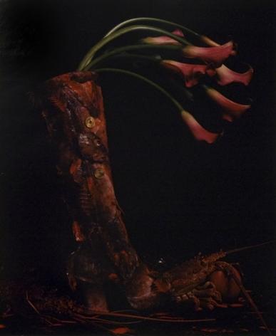 Michiko Kon, The Red Boot, 1995