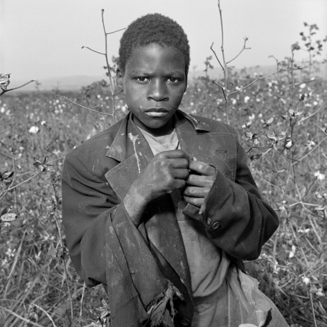 Rosalind Fox Solomon, South Africa, 1989