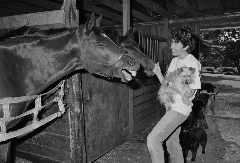 Laura in the stable with horses and dogs, Rowley, Massachusetts - 1992