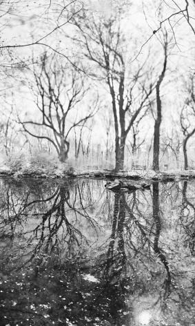 Jeff Chien-Hsing Liao, Rain Water, 2015