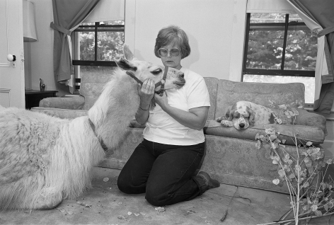 Deborah in living room with Snowy the llama and Winnie, Freedom, New Hampshire - 1993
